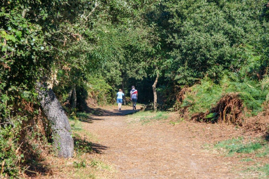 randonnées en Vendée